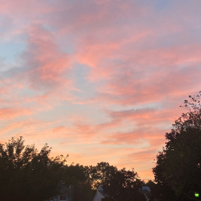 Newtown Crossing Sky, Day 419
